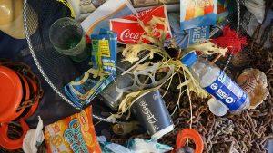 Plastik statt Plankton